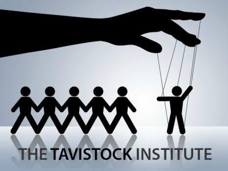 tavistock 2