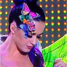 butterfly 28
