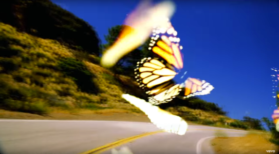 butterfly travis scott musikvideo